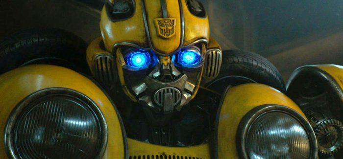 bumblebee-closeup-beetle-700×325
